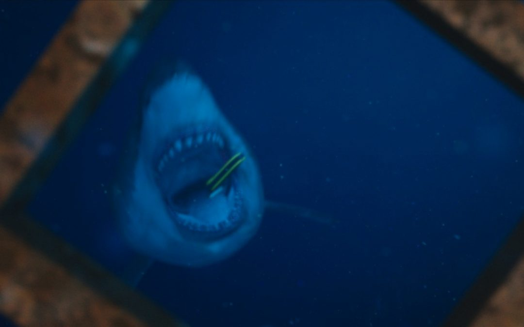 47 METERS DOWN swims to disc and digital this fall; art, details and trailer